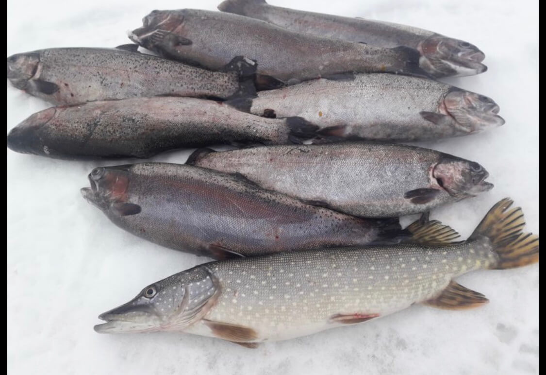 Рыбалка у Иваныча